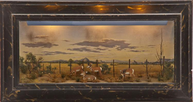 3 Dimensional Pronghorn Framed & Lighted Scene