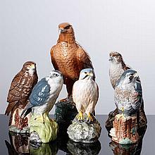 SIX BIRDS OF PREY