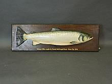 A large composition model of a salmon on an oak