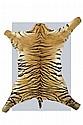 A fine tiger skin rug (Panthera tigris)