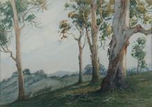 ROSEBRAY, Alvah Earlington 'Pastoral Slopes, Cootamundra' W/Clr 25x35cm