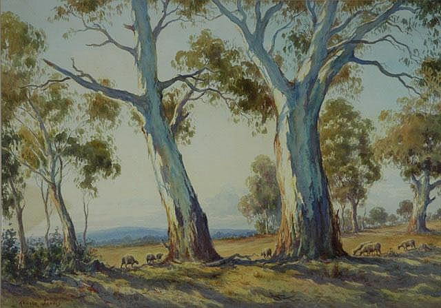JARVIS, Arnold (1881-1959) Gums & Grazing Sheep