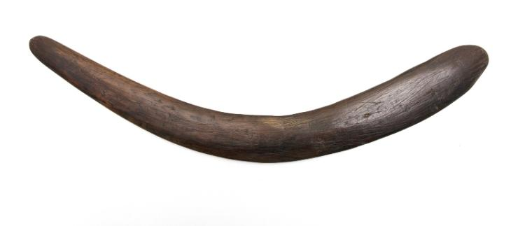 Aboriginal Woman's Boomerang.  Airfoil form with hatch scratched underside. Provenance: Bungan Castle Museum collection.