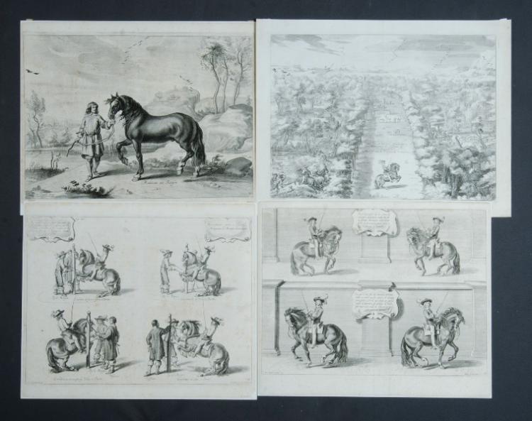 17th C Equestrian Themed Engravings. 5 plates from 'Methode et Invention Nouvelle de Dresser Les Chevaux,' by William CAVENDISH, pub. J. Van Muers, c.1658. Plates 10,25,36 & 38 (2).Copper Engravings (5)39x53cm (each)