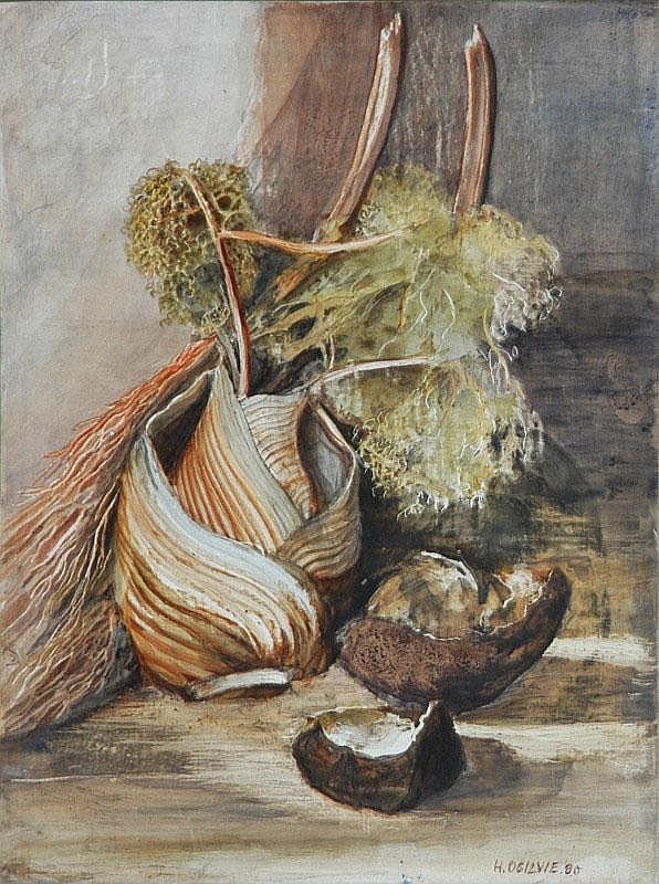 OGILVIE, Helen (1902-1993) 'Still Life Finocchi,'