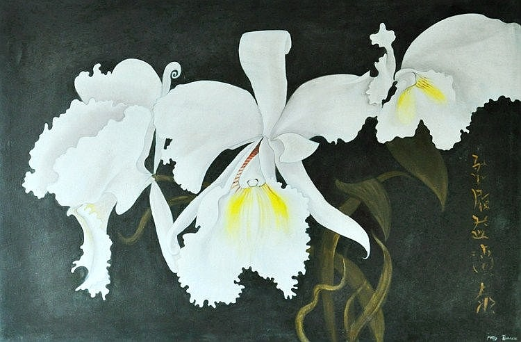 PINNOCK, Mary (b.1951) Orchids Oil on Canvas
