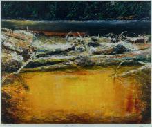 DYER, Geoffrey (b.1947), 'King River'