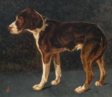 Stevens Joseph - Jeune chien (Young dog)