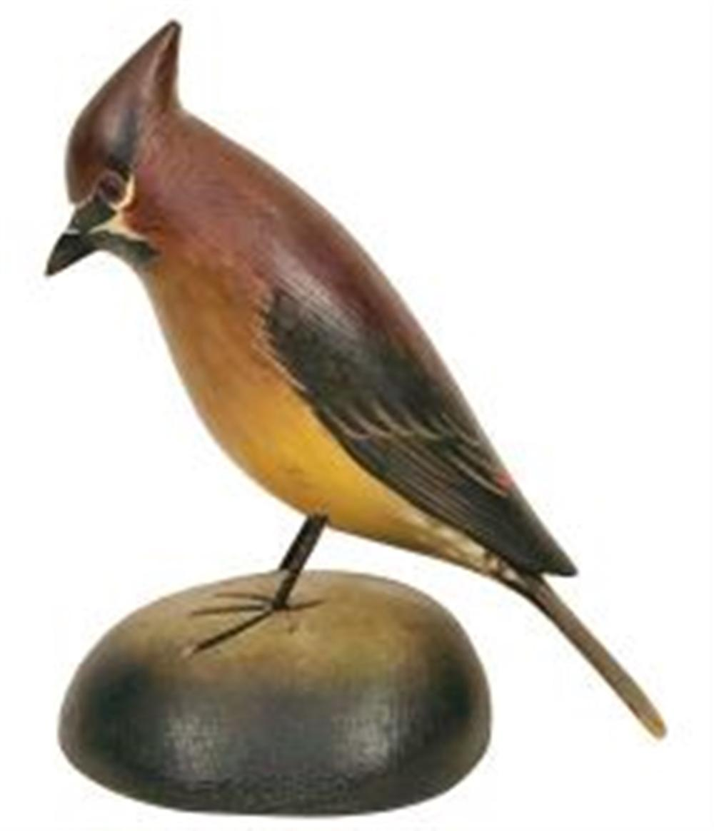 Life Size Cedar Waxwing by Crowell