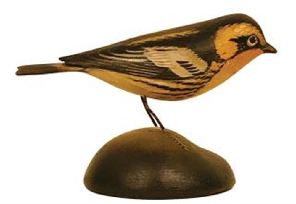Life Size Blackburnian Warbler by Crowell