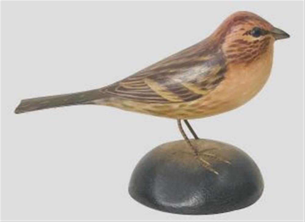 Life Size Purple Finch by Crowell