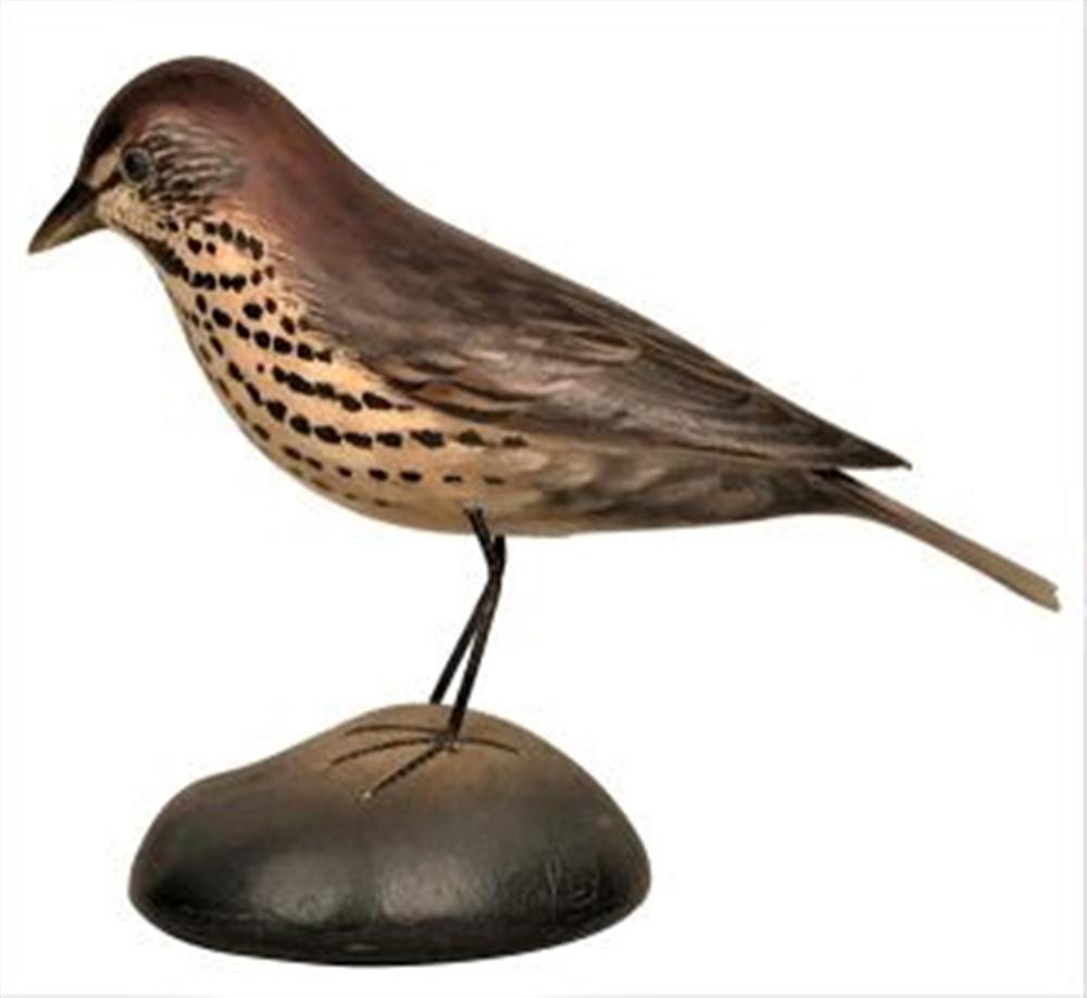 Life Size Song Sparrow by Crowell