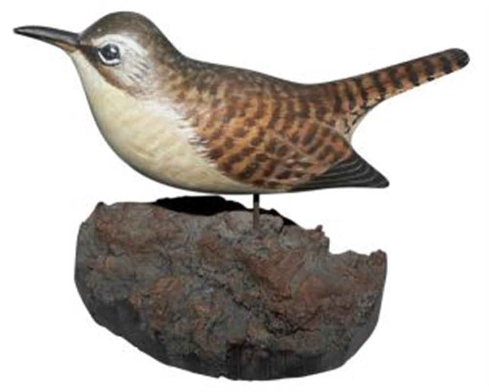 Life Size House Wren by A. E. Crowell