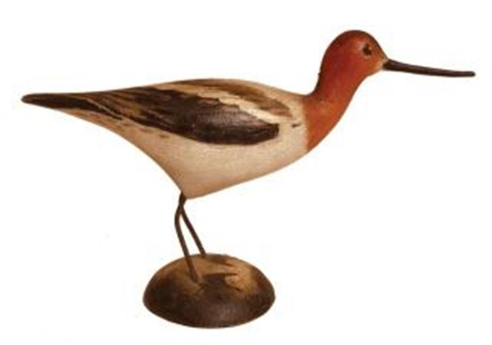 Miniature Avocet by Crowell