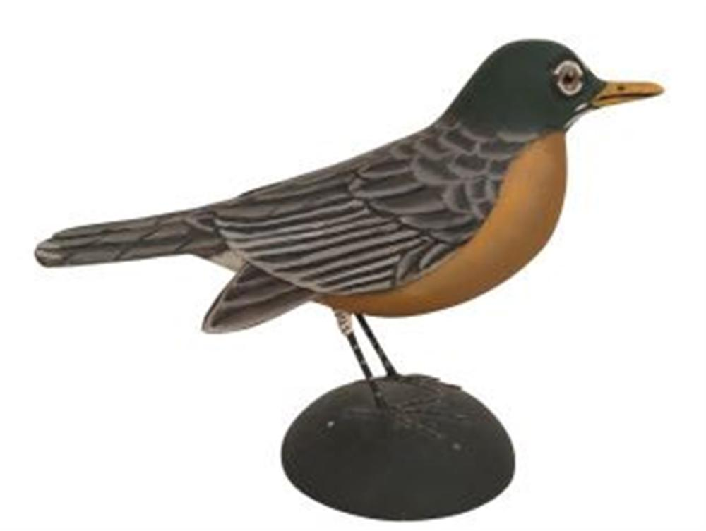 Life Size Robin by James Lapham