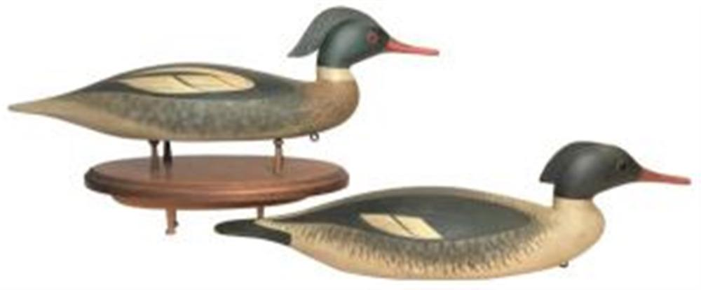 Redbreasted Merganser Pair by Collins