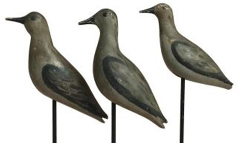 Set of 3 Sanderlings, Duxbury, MA