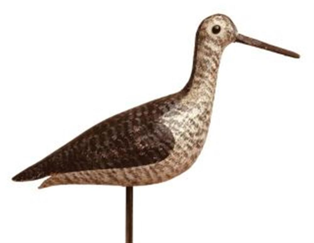 Yellowlegs in Spring Plumage by Lincoln
