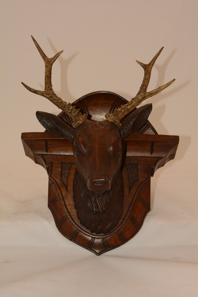 Walnut Hand Carved Stag Head with real Stag Antlers Circa 18