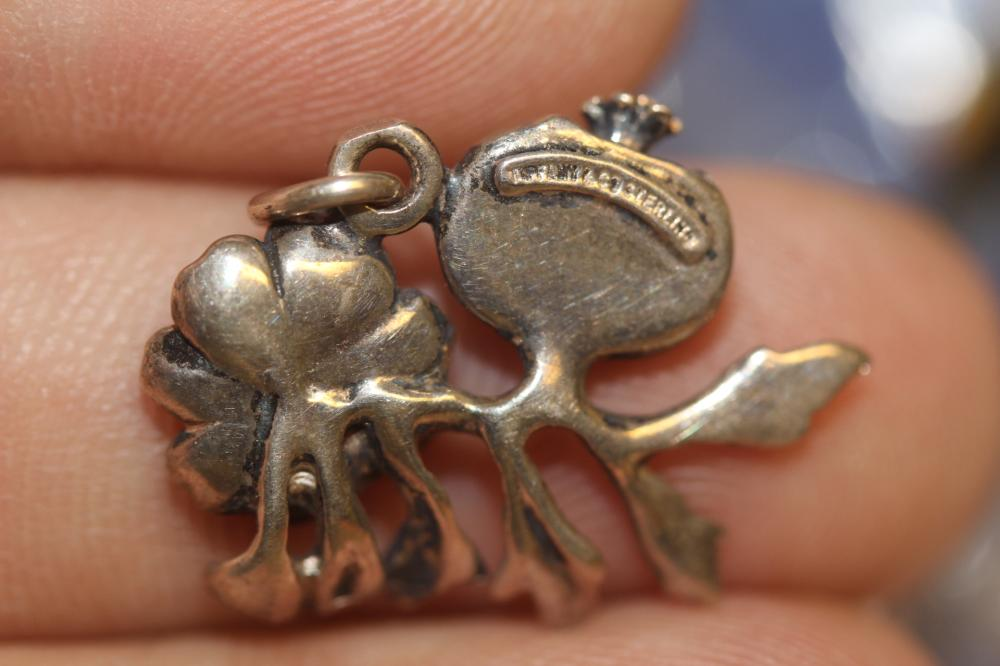 A signed Tiffany and Company Sterling Charm