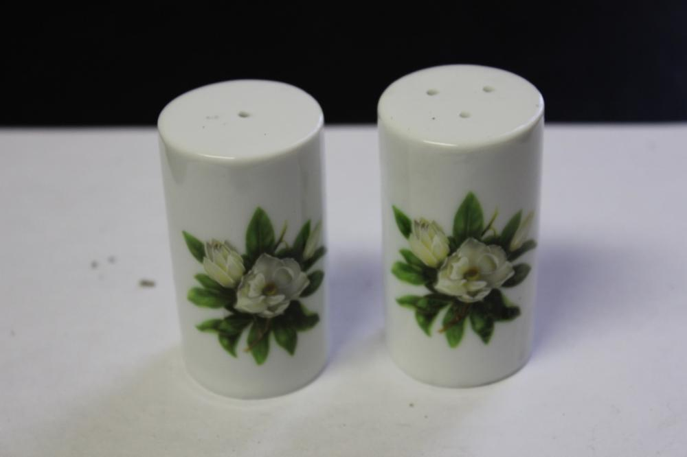 A Pair of Vintage Salt and Pepper Shakers