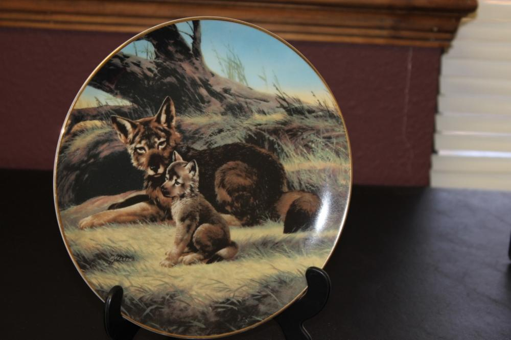Collector's Plate by Will Nelson