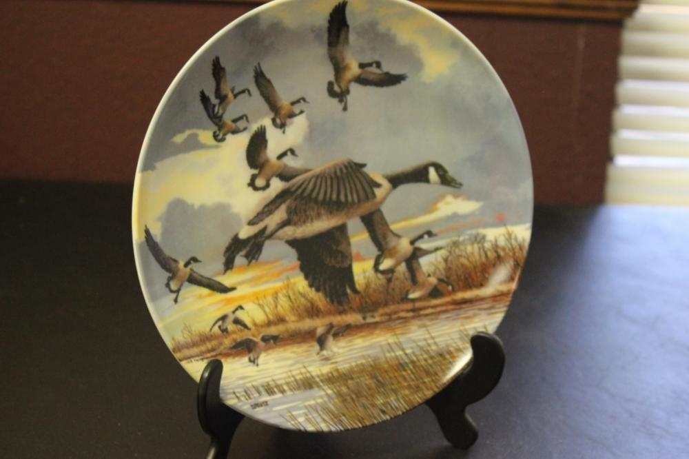 Collector's Plate by Donald Pentz