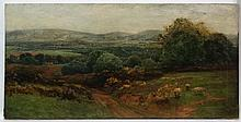 Radcliffe W. Radcliffe (XIX-XX), Oil on canvas, An extensive panoramic land