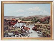 Frances Fry XX Wildlife artist and Illustrator Oil