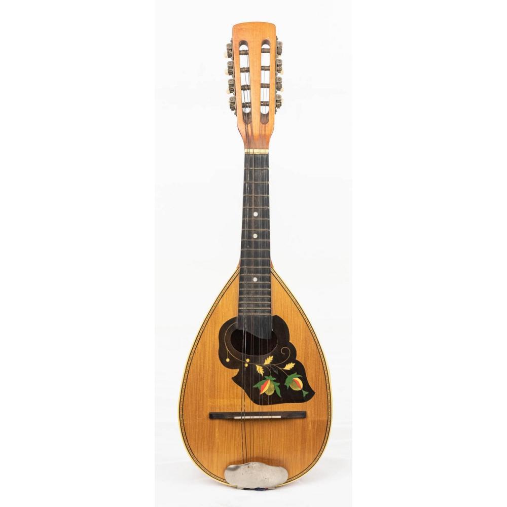 Mandolin Instrument