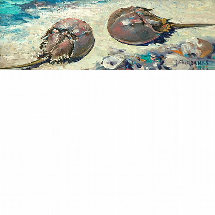 Jonathan Fairbanks American, b. 1933 Pair of Horseshoe Crabs