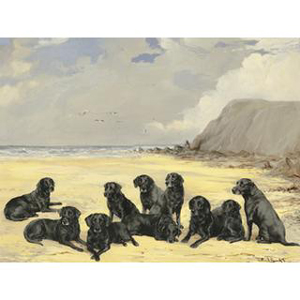 Reuben Ward Binks A Group of ten Black Labrador Retrievers on a Beach £1200-£1667.