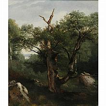 Jules Louis Philippe Coignet French, 1798-1860 Study of a Tree
