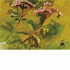 Lois Dodd American, b. 1927 Joe Pye Weed, 1995 Signed Lois Dodd, dated 1995 and inscribed as titled on..., Lois Dodd, Click for value