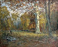 Samuel Harkness McCrea American, 1867-1941 Forest Clearing