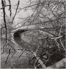 FRIEDLANDER, LEE (b. 1934) [Charles H. Olmsted Parks], 1990s.