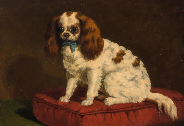 British School 19th/20th Century King Charles Spaniel Seated on a Red Cushion