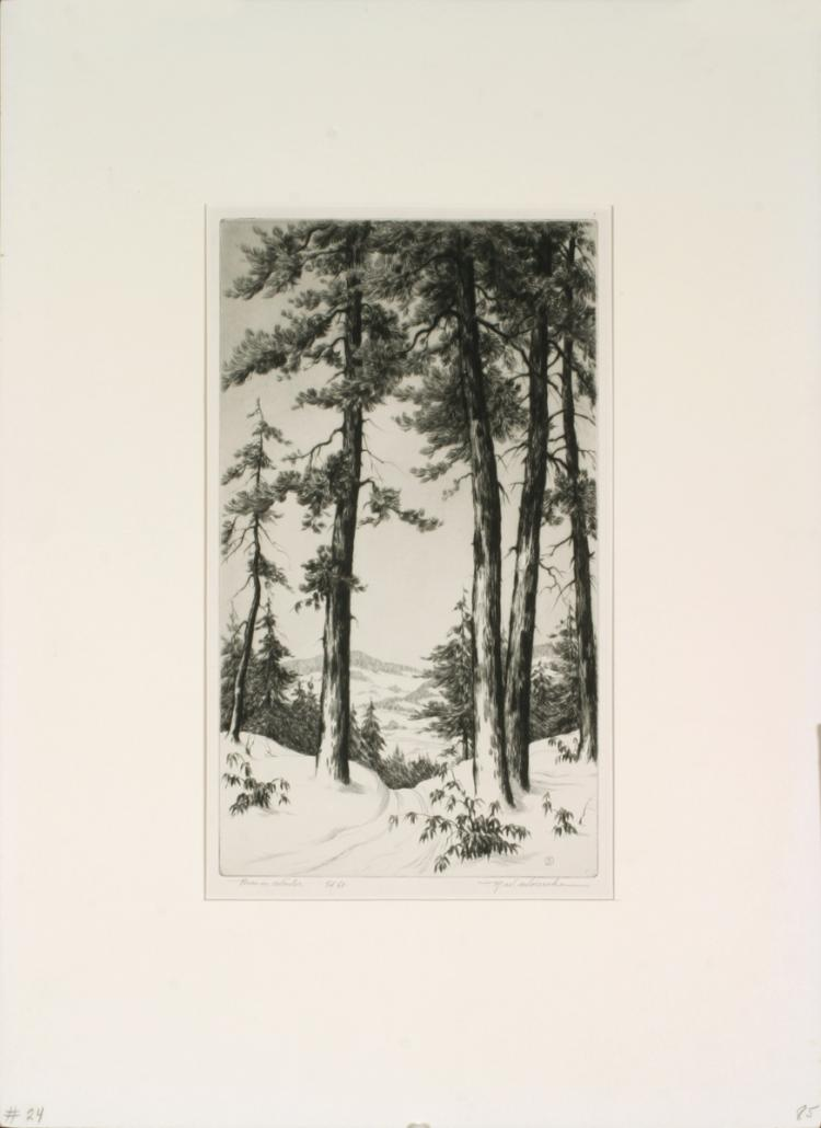 R.W Woiceske - Pines in Winter - SIGNED