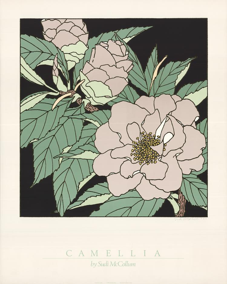 Sudi McCollum - Camellia - 1986 - SIGNED