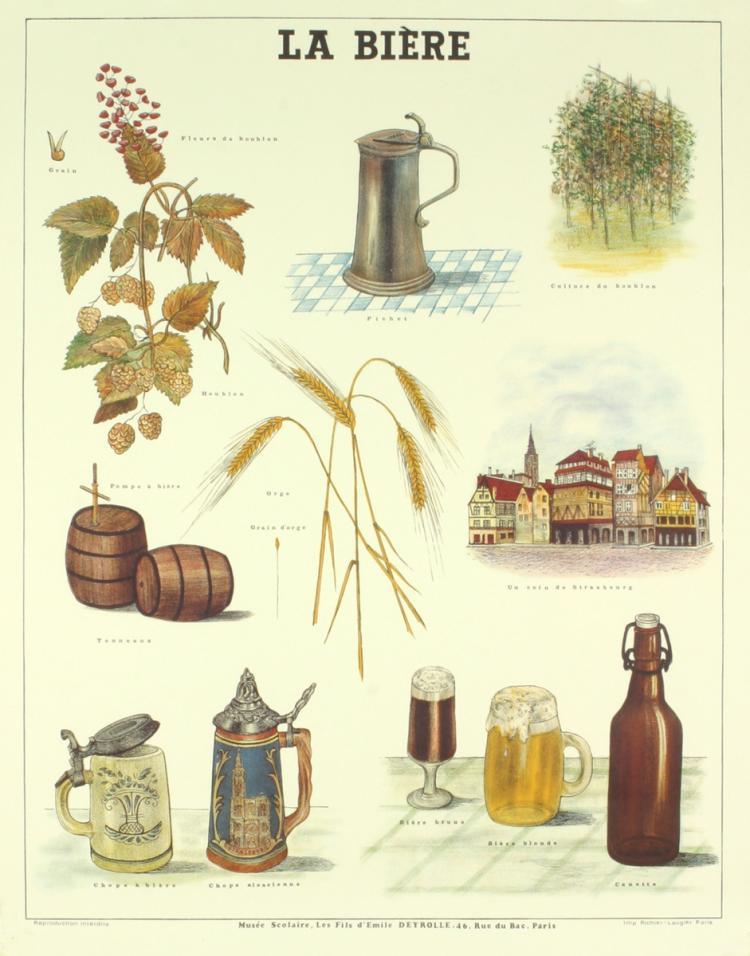 Deyrolle - La Biere