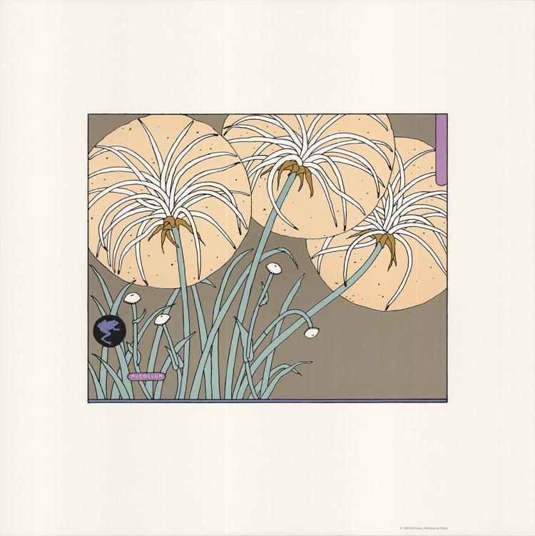 Sudi McCollum - Flowers - 1984