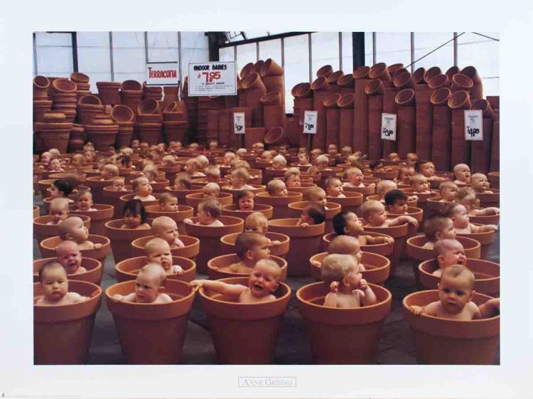 Anne Geddes - Indoor Babys - 1999