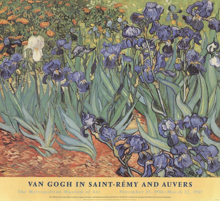 Vincent van Gogh - Irises - 1999