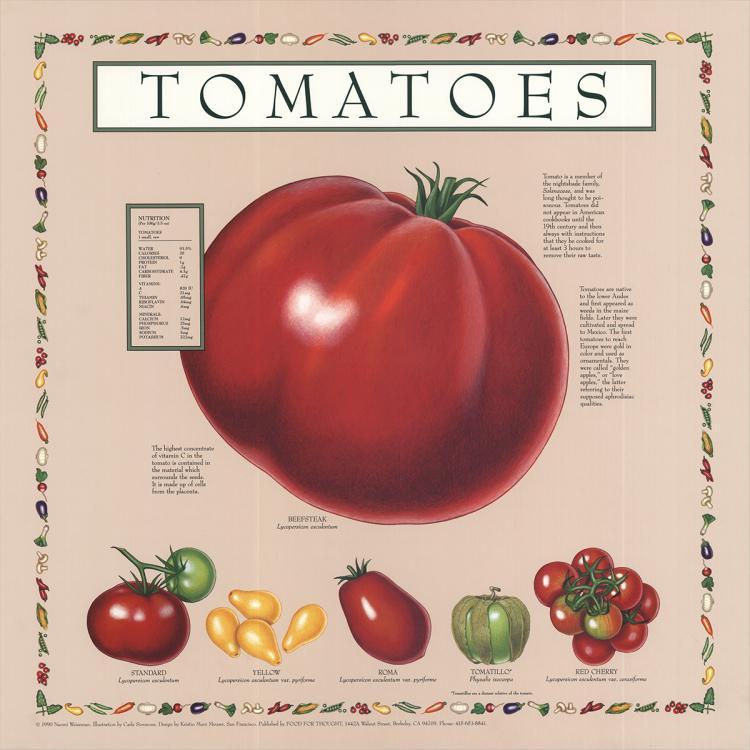 Naomi Weissman - Tomatoes - 1990