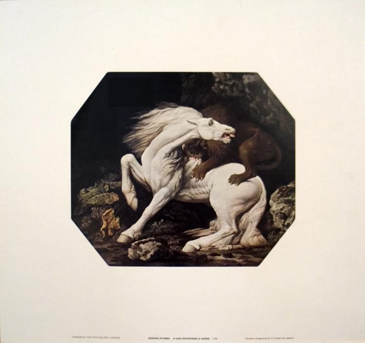 Geore Stubbs - A Lion Devouring a Horse