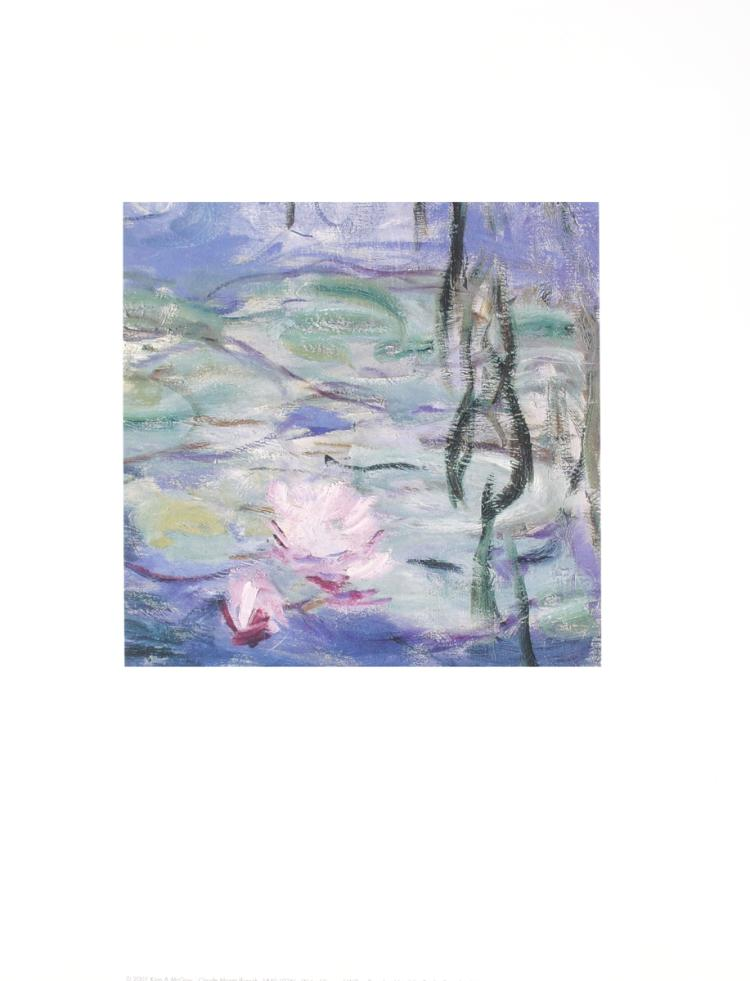 Claude Monet - Water Lillies & Willow Branches