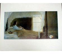 1995 Wyeth Chambered Nautilus Poster