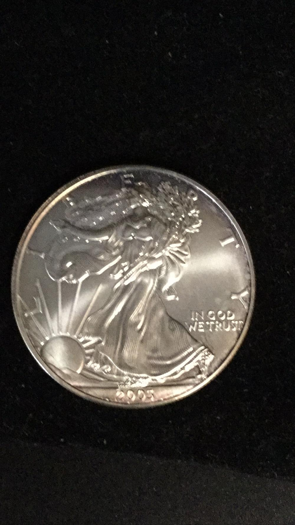 American eagle dollar coin