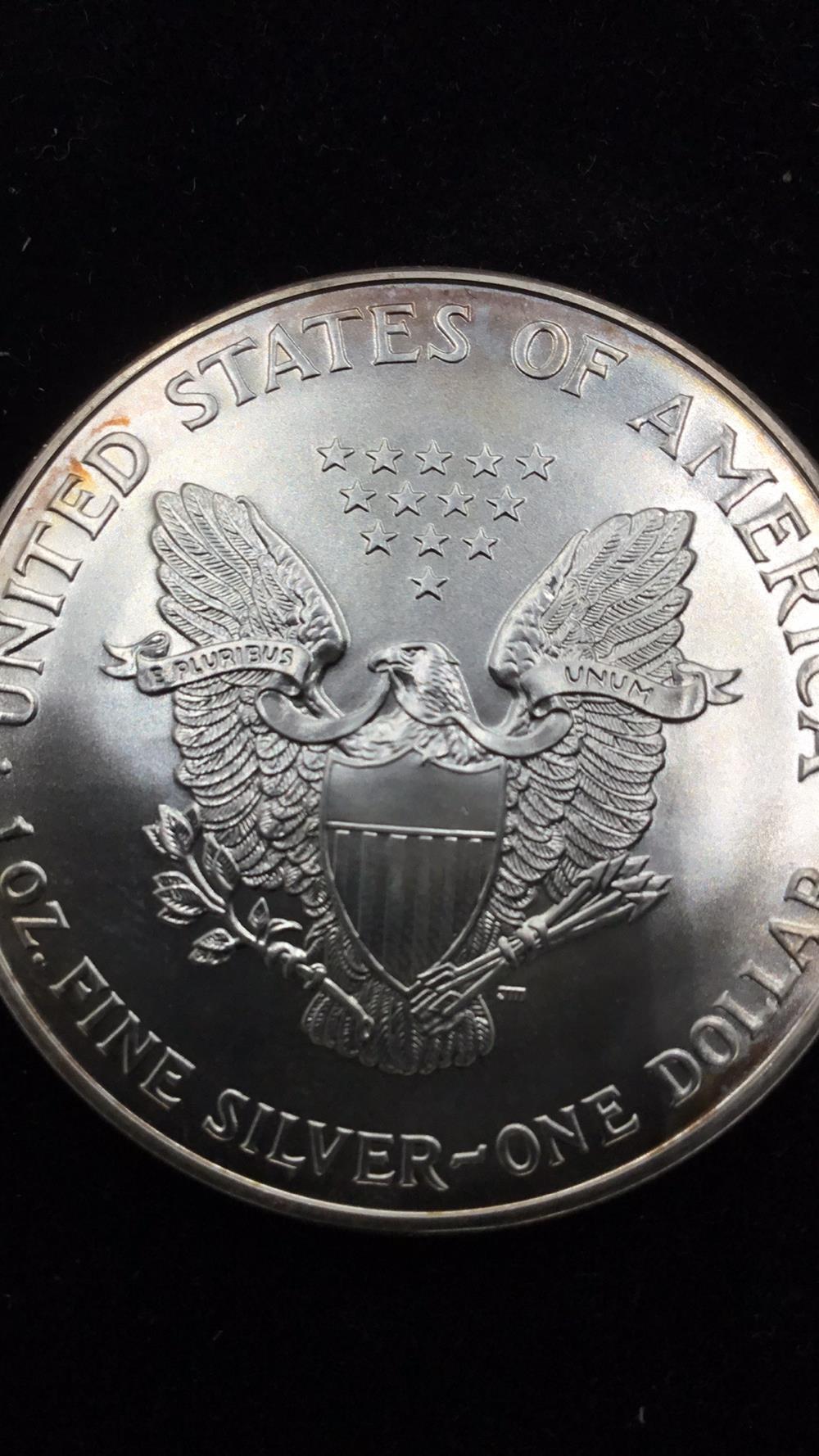 Lot 34: American eagle dollar
