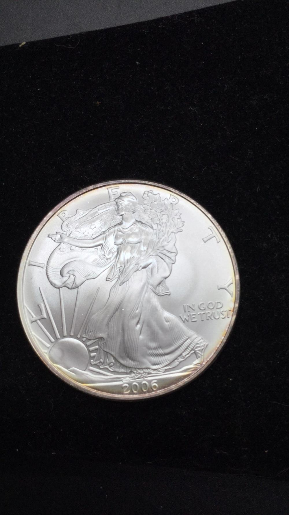 2006 American eagle dollar coin